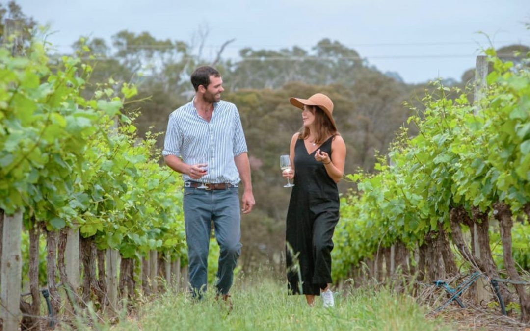 Talking Henty Wines With Martin From Bochara