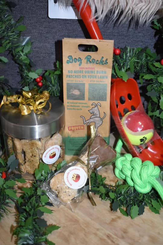 Pawfect Pampers and Hamilton Pet Palace Chritsmas Gifts